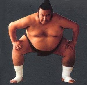 sumo wrestler bench press fit fat or fit slim