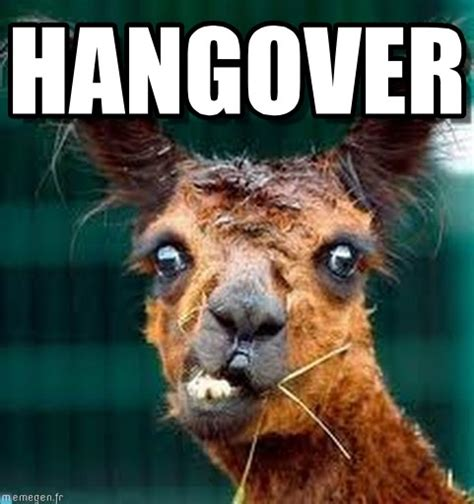 Hangover Meme - hangover lama meme on memegen