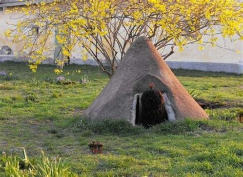 unusual dog houses unusual dog house 5 pics