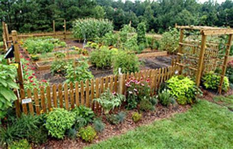 best summer garden vegetables summer vegetable gardening growing a greener world 174