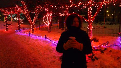Zoolights Suzanne Stengl Calgary Zoo Lights Hours