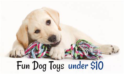 toys under 10 ten fun dog toys under 10 wisconsin mommy