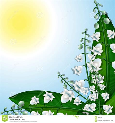 the valley of light light lilies of the valley stock vector image 38930327