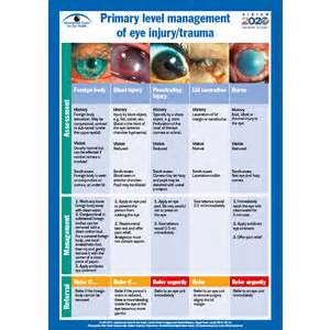 Blindness Awareness Activities Community Eye Health Journal 187 For The Clinic New Poster