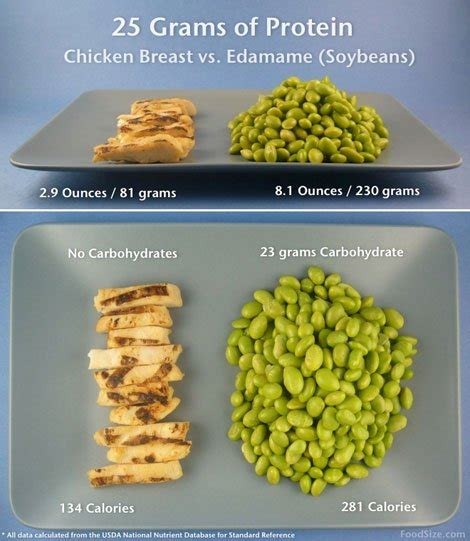 protein chicken breast foodsize what 25 g of protein from grilled chicken looks