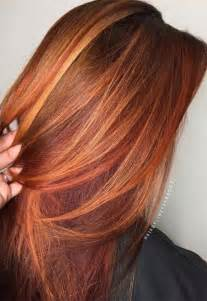 hair colors pictures 17 best ideas about copper hair colour on