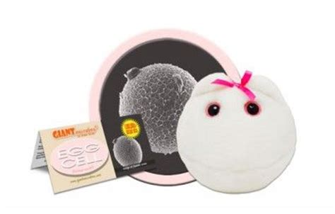 Gadgets Get Plush Treatment by 121 Best Microbes Images On