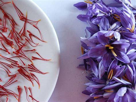 fiori in cucina i fiori in cucina mangostano