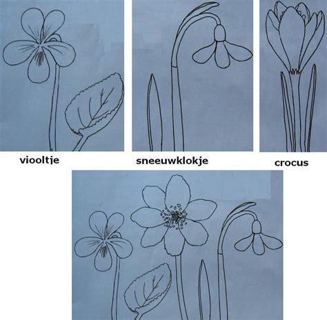 bloem tekenene simpel bloemen tekenen tips en voorbeelden hobby blogo nl
