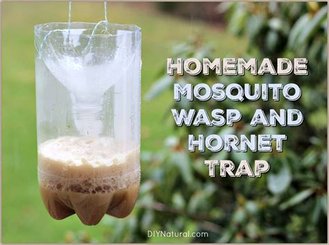 diy mosquito trap mosquito traps and wasp traps