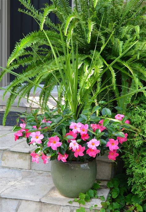 Pink Garden Planters by 17 Best Images About Backyard Diys On Mailbox