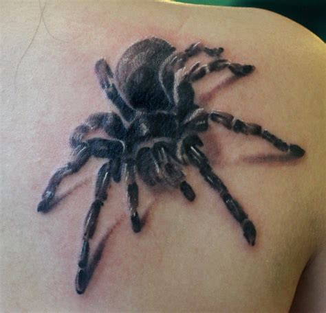 tarantula tattoo tarantula stencil