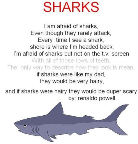 baby shark rhyme coral mayhem the daily pos