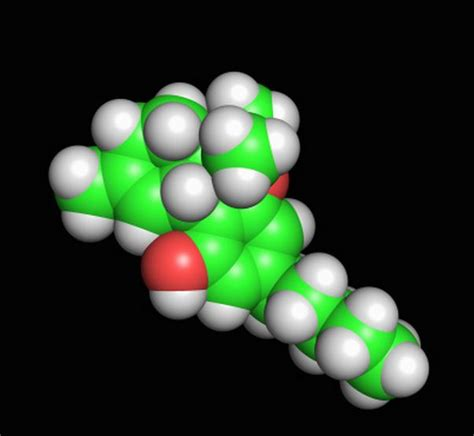 Effect Of Benadryl On Thc Detox by Thc Detox Become Healthy And Happy