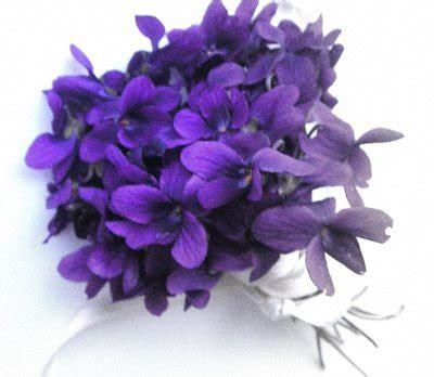 sui fiori di ciliegio haiku sui fiori e non ciliegio in fiore
