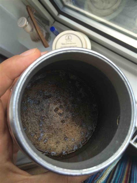What is this? I found it 'growing' in my Moka Pot. I can wash it all out, then it grows back