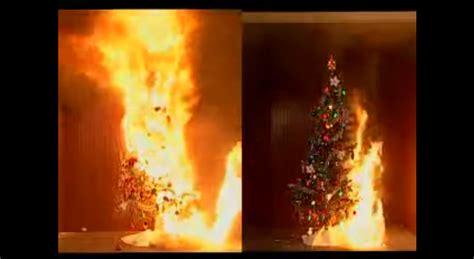 national fire protection association christmas tree fire