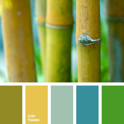 colour  bamboo color palette ideas
