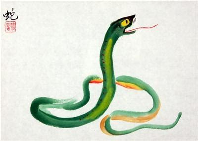 new year snake and monkey 50 best images about the snake zodiac on