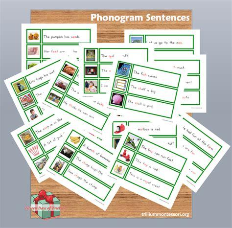 free montessori printable phonogram sentences