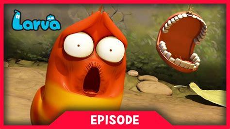 download film larva cartoon mp4 larva tooth ache cartoon movie cartoons for children