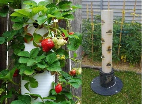 how to make a vertical strawberry planter home