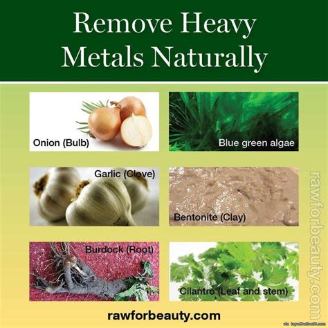 Foods That Help Detox Your Of Heavy Metals by Remove Heavy Metals From Your By Regularly