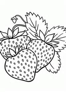 fruit coloring pages for kids big collection of fruit