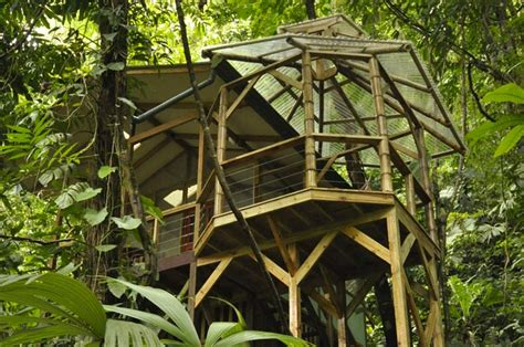 treehouse community finca bellavista treehouse community costa rica