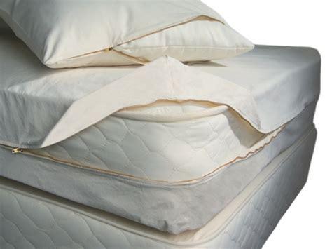 milben matratze reinigen was sind milben milben im bett bek 228 mpfen