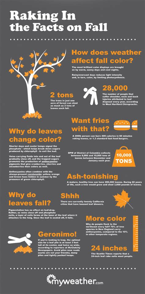 fascinating fall facts blissplan com
