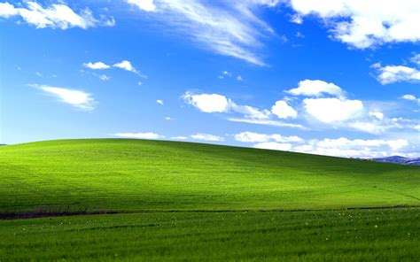 download wallpaper for pc xp windows xp bliss wallpapers hd wallpapers id 11640