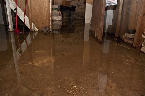 erie county department of health offers flood cleanup