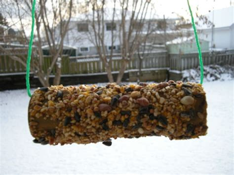 Bird Feeder With Peanut Butter peanut butter bird feeder