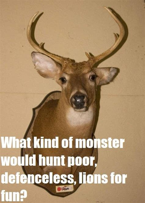 Oh Deer Meme - oh deer kendall jones hunting photo controversy know