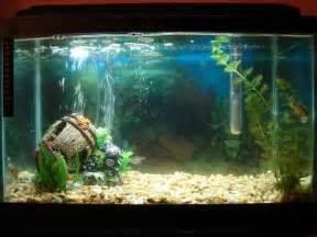 Tropical Fish Tanks   Page 15