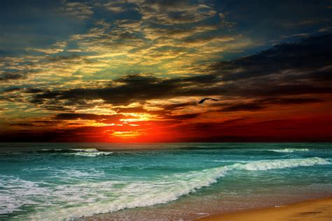 wallpaper beach sunset clouds  nature