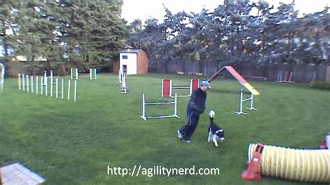 backyard obstacle course for dogs 3 masters backyard dog agility sequences annotated youtube