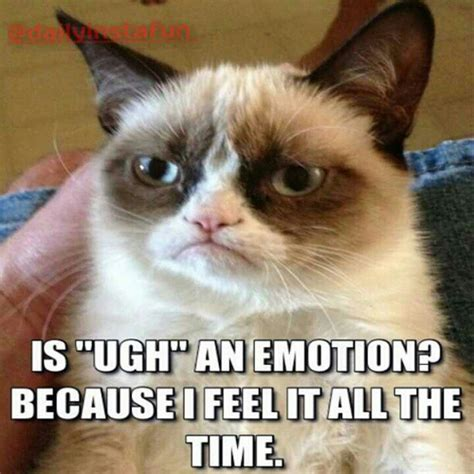 Ugh Meme - is quot ugh quot an emotion laugh likeforlike hilarious