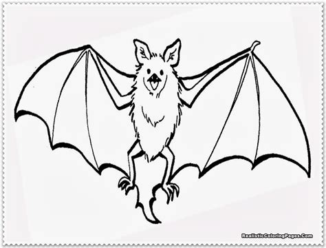 Realistic Bat Coloring Pages Realistic Coloring Pages Coloring Pages Bat