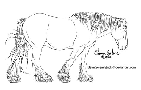 draft horse coloring page draft horse sketch