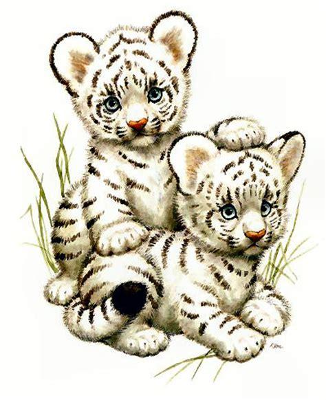 imagenes de tigres kawaii zoo jungla selva animales imagenes para bajar