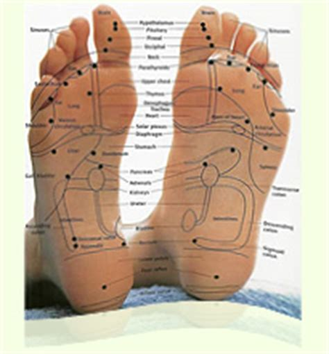 Can Detox Foot Pads Clean My System Of Marijuana by Foot Detox Patches Detox Foot Pads Sap Sheet Buy