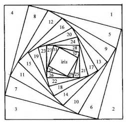 iris folding templates squaretemplate