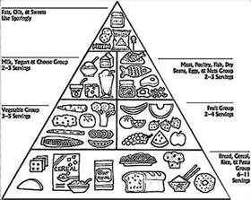 food pyramid coloring page black and white printable food pyramid pictures to pin on