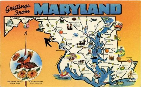 The Maryland Judiciary Search Pin Maryland Judiciary Search Results On