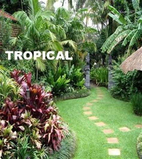 Small Tropical Garden Ideas Small Tropical Garden Ideas Garden Design On Landscaping Tropical Garden Design Type Ideas