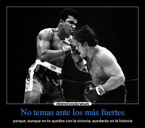 imagenes motivacionales de boxeo im 225 genes y carteles de boxeo pag 2 desmotivaciones