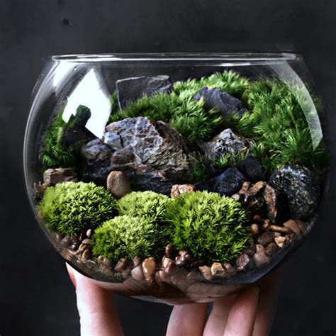 Candles And Home Decor bio bowl forest world terrarium apollobox