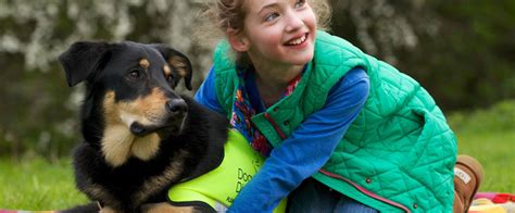 dogs for the disabled charities in the cotswolds friendly cotswolds